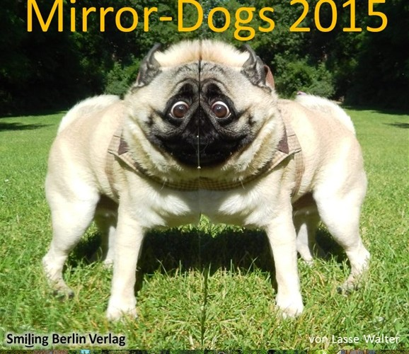 Mirror Dogs