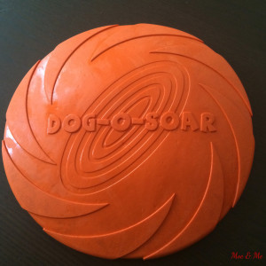 Unsere Frisbee