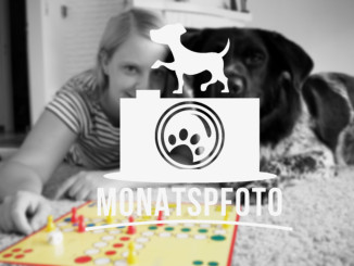 Monatspfoto August: Partnerlook