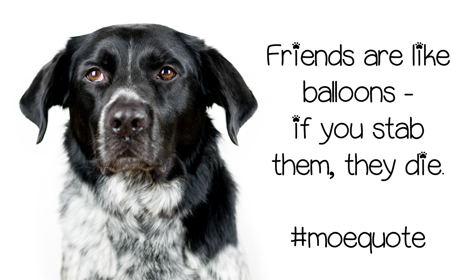 Friends are like balloons - if you stab them they die